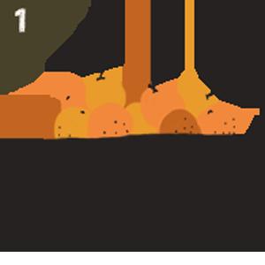 step 1 choose organic oranges